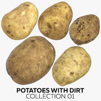 potatoes dirt 01 3D