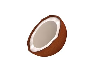 3D coconut nut model