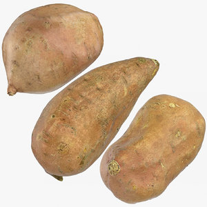 3D model sweet potatoes 02