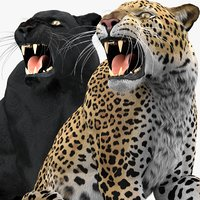 3D model leopard panther pack fur