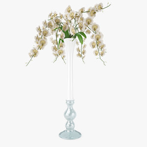 orchid flowers vase 3D