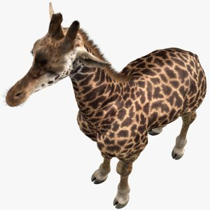 realistic giraffe fur 3D model