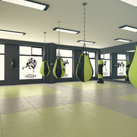 kickboxing gym 3D