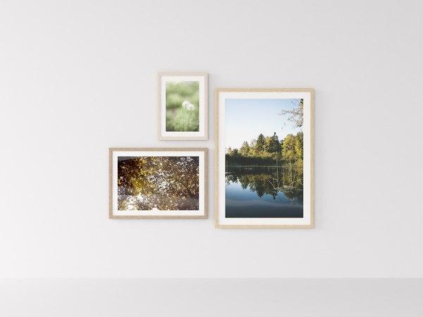 3D frames nature
