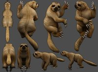 sloth Low-poly