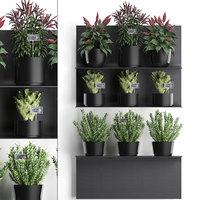 plants wall decor vertical 3D