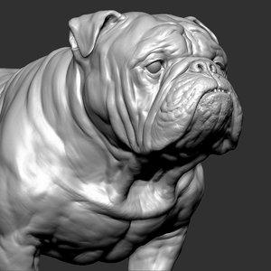 english bulldog dog vfx 3D