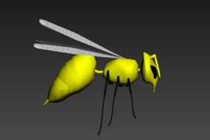 3D model bee insect