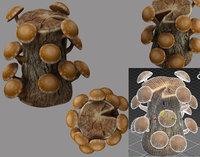 Shiitake mushrooms and stump 3D model