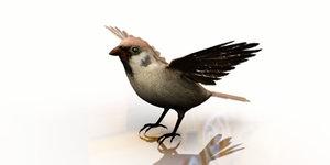 sparrow 3D model