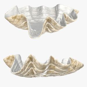 bowl clam shell 3D model
