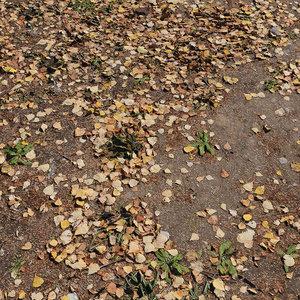 ground autumn scan model