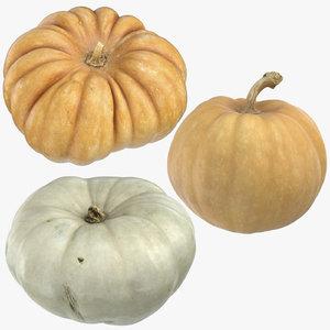 pumpkins 02 model