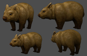 wombat low-poly 3D model