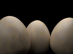 dinosaur egg model