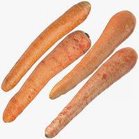 carrots 02 3D model