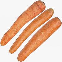 carrots 03 3D