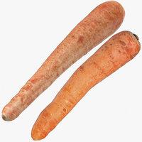 carrots 04 3D model