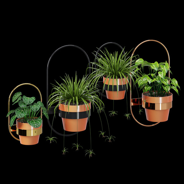 3D model wall planters oval