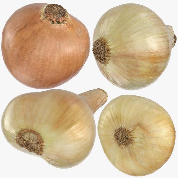 yellow onions 01 3D model