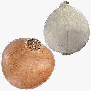 2 onions - yellow 3D model