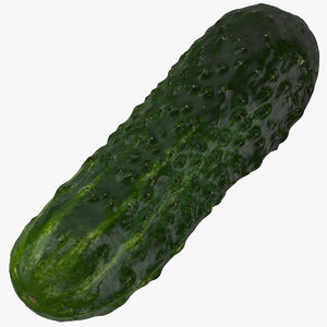3D model kirby cucumber 03