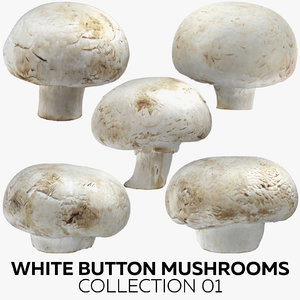 3D white button mushrooms 01