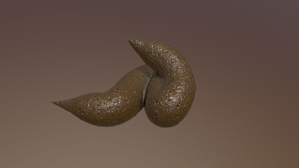 3D feces excrement poop