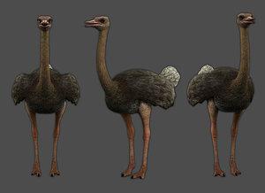 ostrich low-poly 3D model