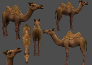 camel low-poly 3D