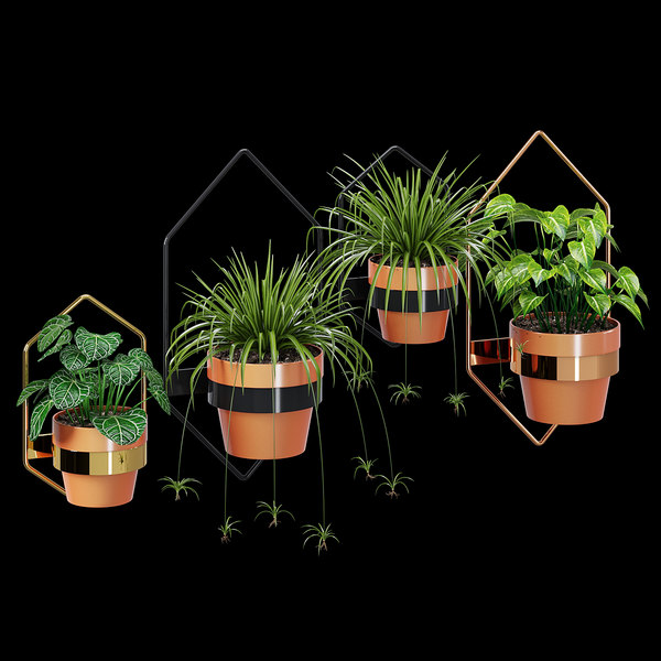 wall planters hexagon pots 3D model
