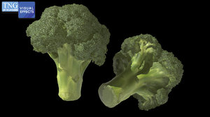 3D broccoli florets