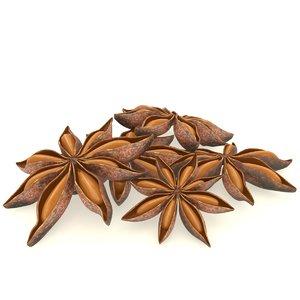 3D star-anise star spice food