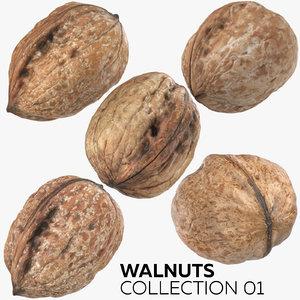 walnuts 01 3D model