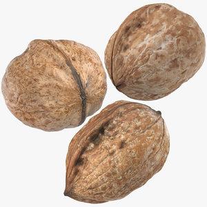 3D walnuts 02