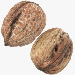 walnuts 03 3D model