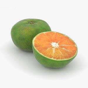 3D green tangerine model