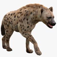 Hyena(Rigged, FUR)