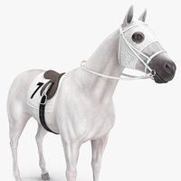 white racehorse horse racing 3D model