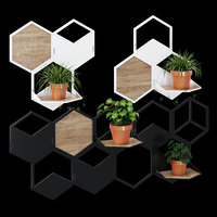 3D wall plant holder