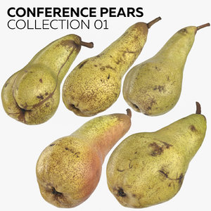 3D conference pears 01 model