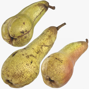 3D conference pears 02