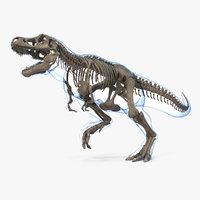 tyrannosaurus rex skeleton fossil 3D model