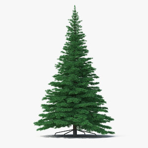 3D woodland pine