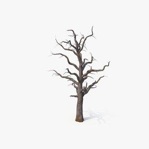 3D dead tree