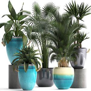 ornamental plants model