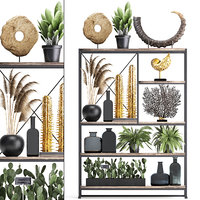 Shelf with reeds and plants coral decor