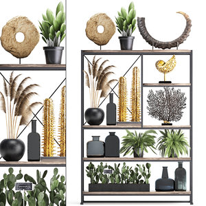 3D decorative shelf coral reed model