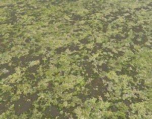 Ground terrain swamp PBR pack 1
