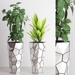 plants 210 indoor 3D model